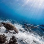 Freediving as part of a sustainable lifestyle