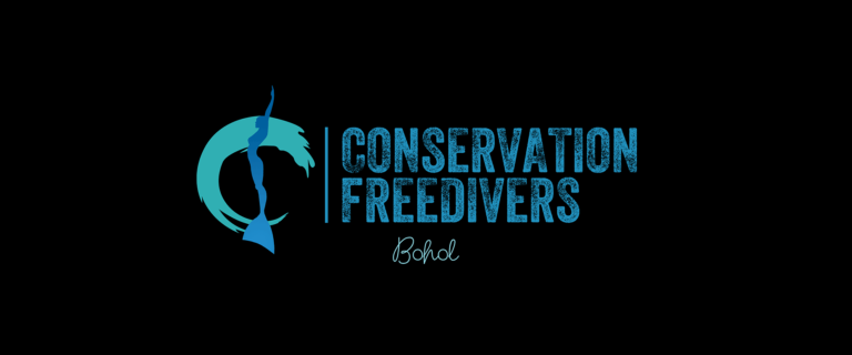 Job opening : master freediving instructor and school manager