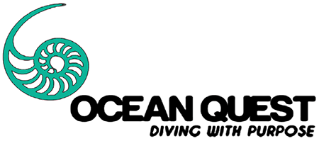 logo Ocean Quest Global, Coral restoration and Marine Conservation courses