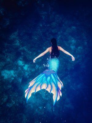 Devenir une sirène, apprendre à nager et à plonger en apnée avec Eco Warrior Mermaid